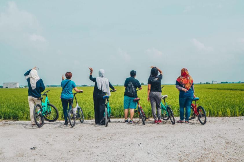 Sekinchan rice fields | Ummi Goes Where?