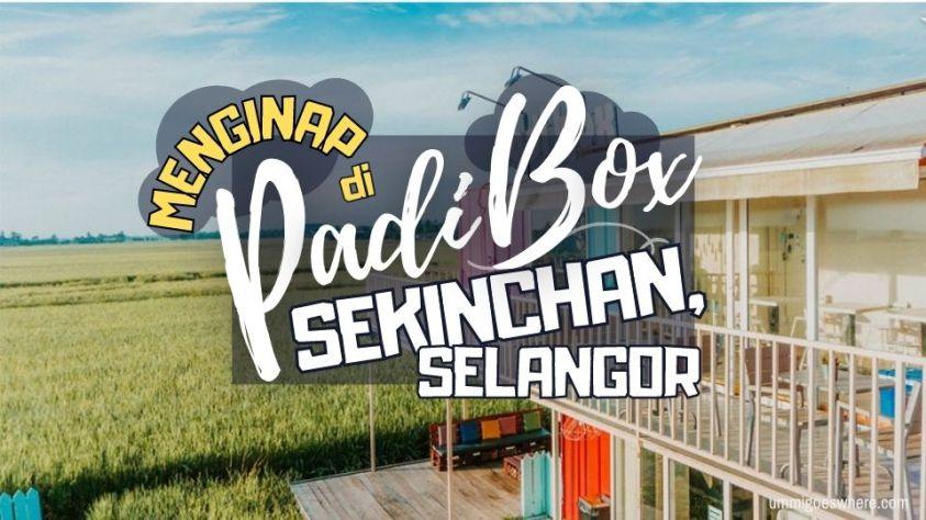 Padi Box Sekinchan hotel unik di Selangor