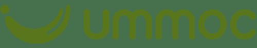 iconita-logo-orizontal-header-verde
