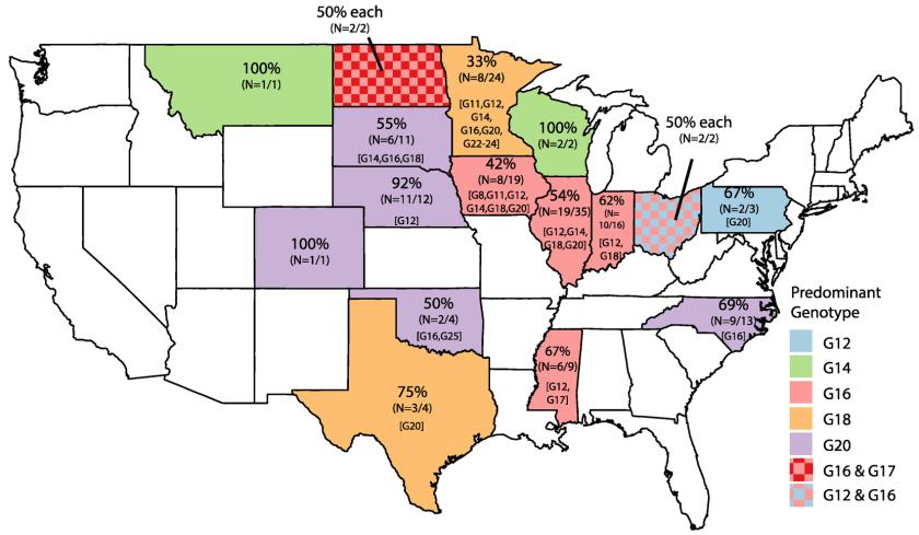 Rotaviruses B geographical distribution US