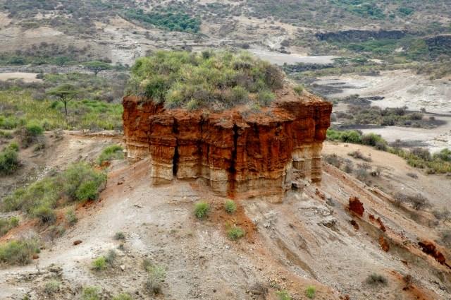 O caminho para o Serengeti