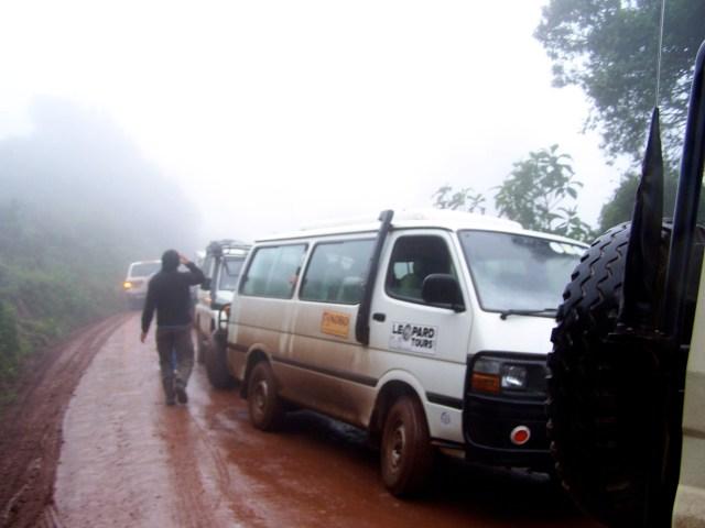 Os carros de safari parados na estrada.