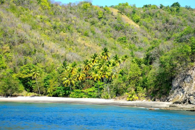 Enseadas e praias paradisíacas aparecem por todos os lados.