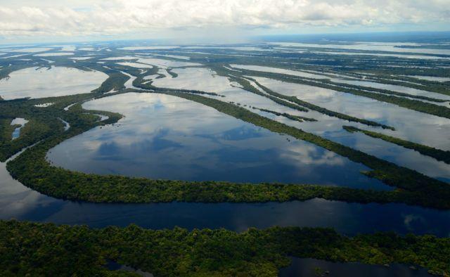 O incrível Arquipélago das Anavilhanas.