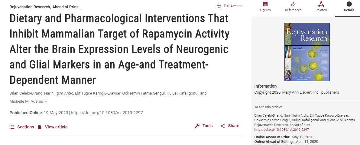 Dietary and Pharmacological Interventions That Inhibit Mammalian Target of Rapamycin Activity Alter the Brain Expression Levels of Neurogenic and Glial Markers in an Age-and Treatment-Dependent Manner