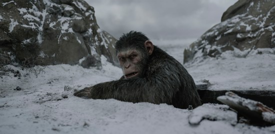 Planeta Macacos: A Guerra (War for the Planet of the Apes) | Imagens (4)