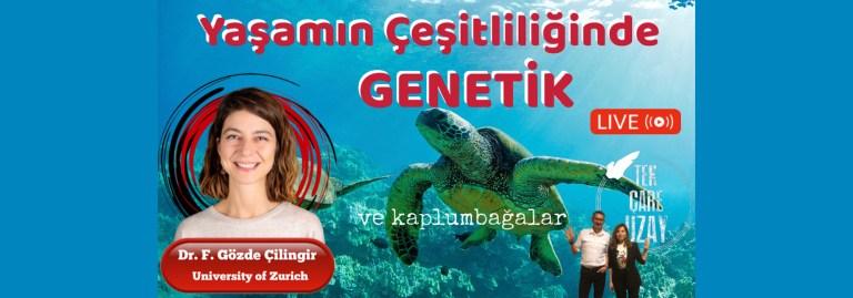 Yaşamın çeşitliliği, genetik nesli tükenen kaplumbağalar, Dr. Gözde Çilingir (Zürih Üni)