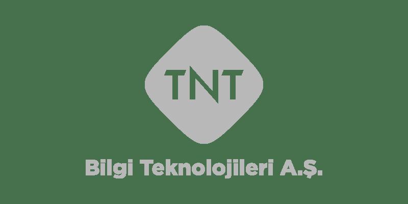 tnt-bilgi-teknolojileri-logo