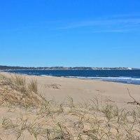 Pelados na praia - Uma experiência em uma praia nudista