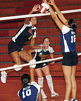 helen lasichanh volleyball