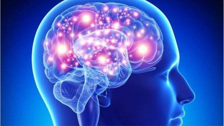 Найдена причина болезни Альцгеймера. Это «прионы» 2