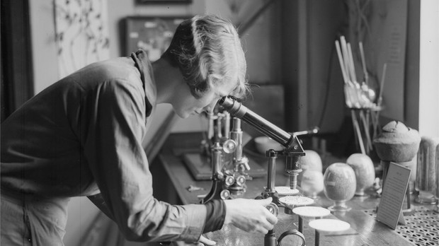 Перевернувшие ход науки. 10 женщин-ученых 1