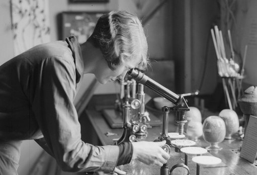 Перевернувшие ход науки. 10 женщин-ученых 29
