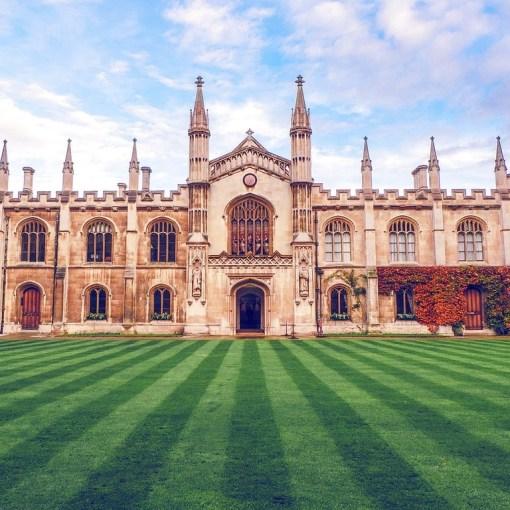 Топ-100 лучших университетов мира за 2018-2019 9