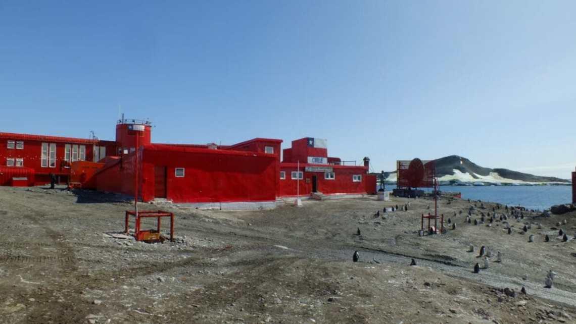 25-сезонная экспедиция. Вдоль Антарктического полуострова 11