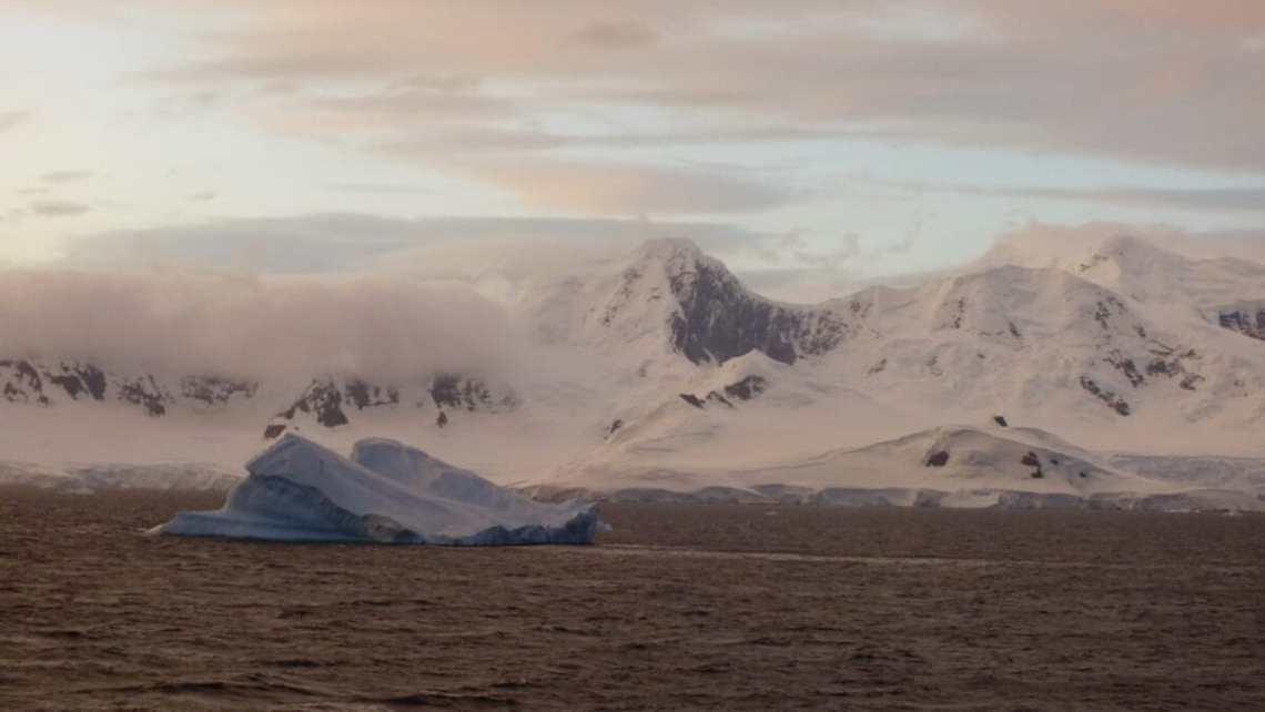 25-сезонная экспедиция. Вдоль Антарктического полуострова 5