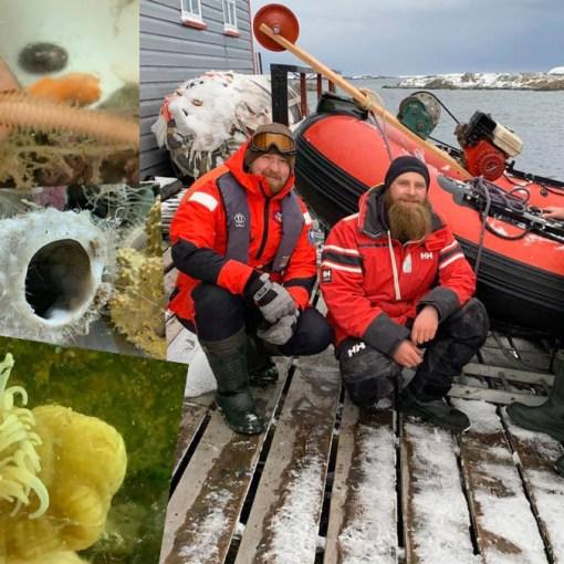 Украинские исследователи нашли в Антарктиде уникальных морских животных 11