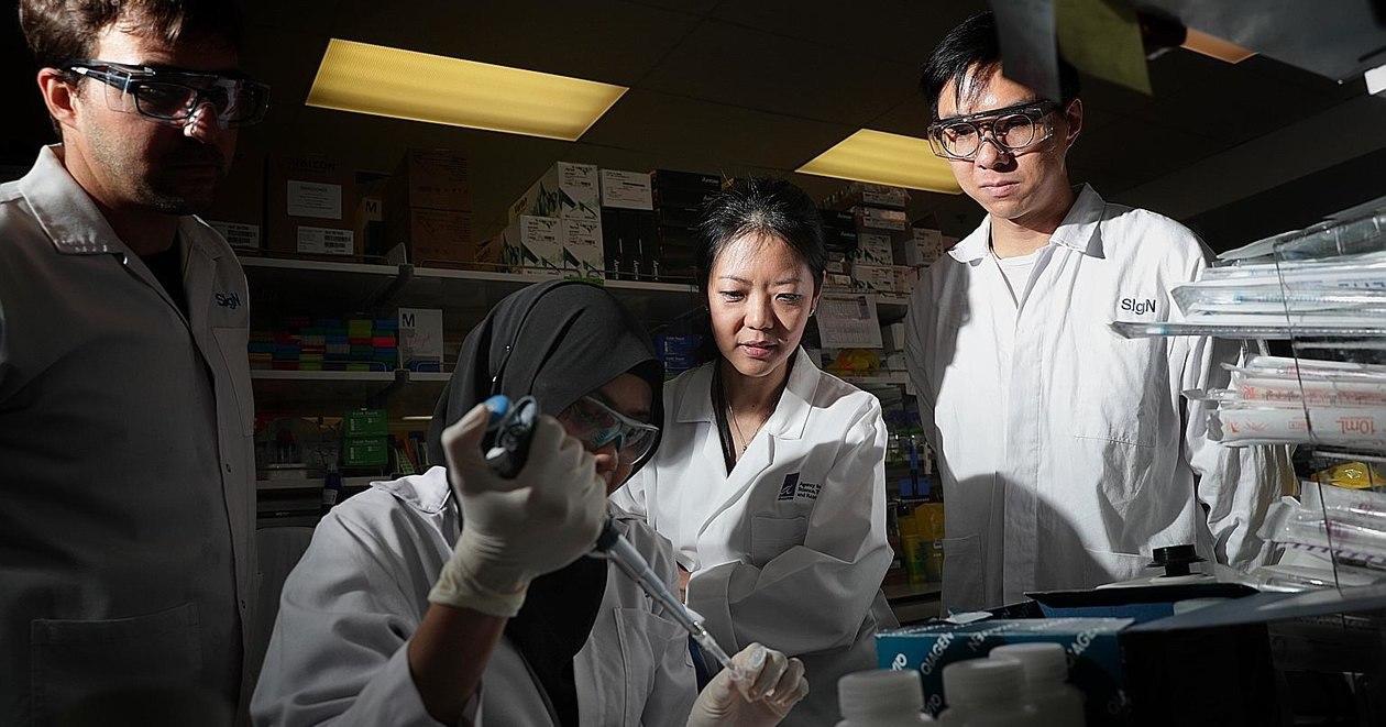 Учёные из Сингапура аннулировали все прогнозы по развитию коронавируса 1