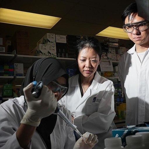 Учёные из Сингапура аннулировали все прогнозы по развитию коронавируса 33