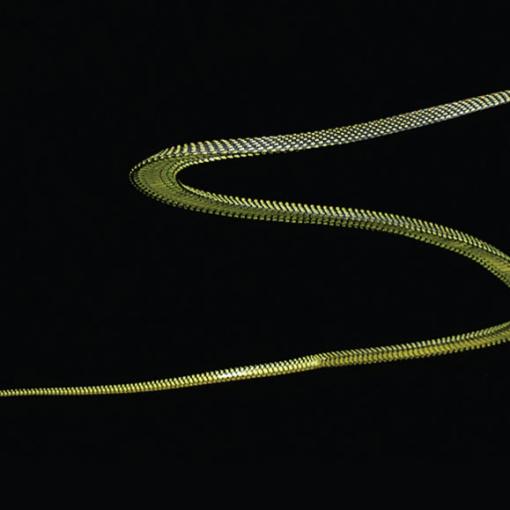Ученые разобрались, как летают змеи 3