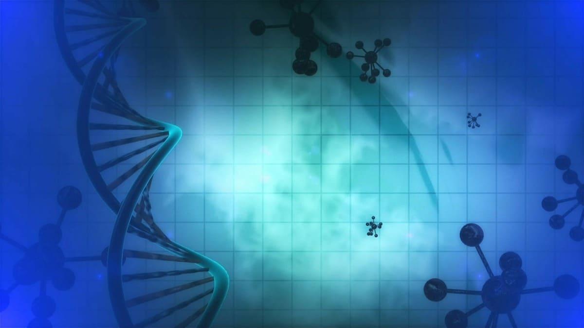 23-я Европейская конференция по динамике молекулярных систем 1