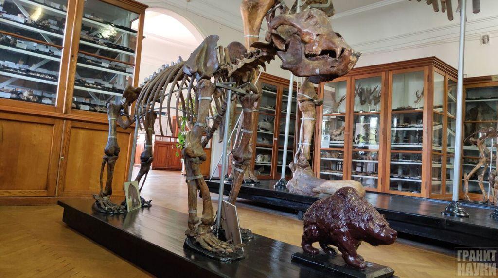 Палеонтологическая гордость Одессы. Фоторепортаж 8