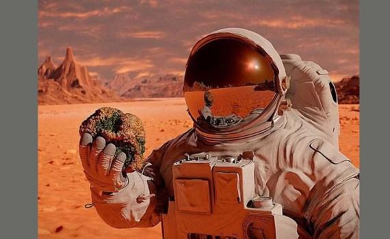 Добраться – не проблема: Маск рассказал, в чем будет самая большая сложность при колонизации Марса 1