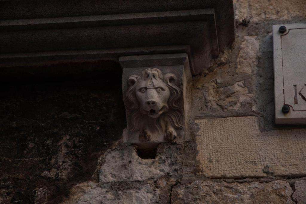 Поиск венецианской республики и ее древних цивилизаций. Научная экспедиция в Хорватию 24