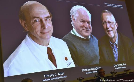 Нобелевский комитет не оправдал прогнозы. Стали известны первые нобелевские лауреаты 2020 3