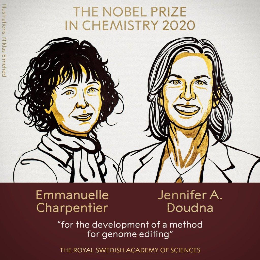 Нобелевскую премию по химии разделят женщины – генные инженеры 3