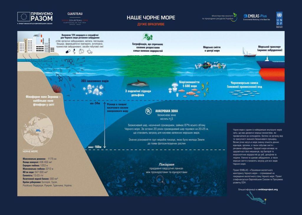 Чёрное море: уникальная и загадочная экосистема 4