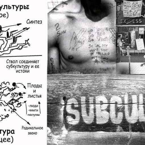 """Древо Лоуренса. Модель """"перевернутого древа"""" в исследовании субкультур 3"""