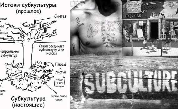 """Древо Лоуренса. Модель """"перевернутого древа"""" в исследовании субкультур 1"""