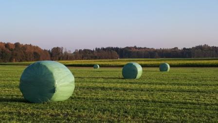 Landwirtschaft Siloballen auf dem Feld