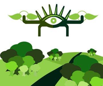 El 8vo Festival de Cine Verde de Barichara