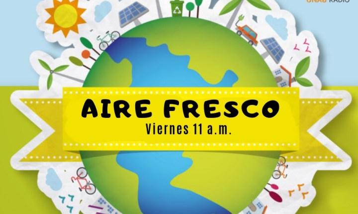 Aire Fresco 7