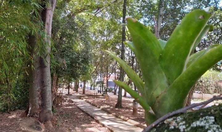 Caminodromo de Provenza: el parque abandonado