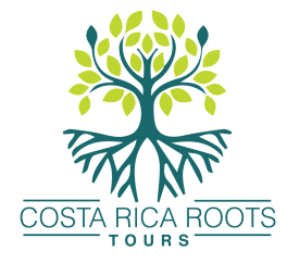 costa rica roots tours