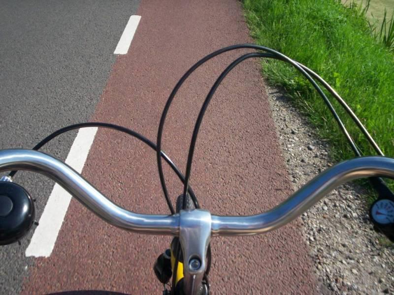 Mozione: Ritiro determina relativa alla pista ciclabile del Viale delle Cascine