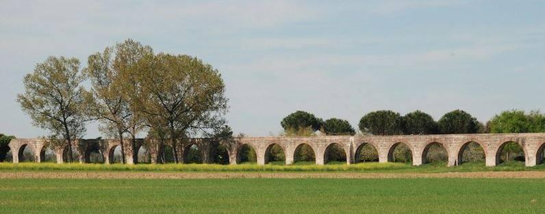 Il parco agricolo della piana pisana: la proposta di Tiziana Nadalutti, candidata per le regionali con la Lista SI' – Toscana a Sinistra, per uno sviluppo alternativo dell'area pisana