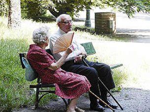 Interpellanza: Servizi estivi per gli anziani