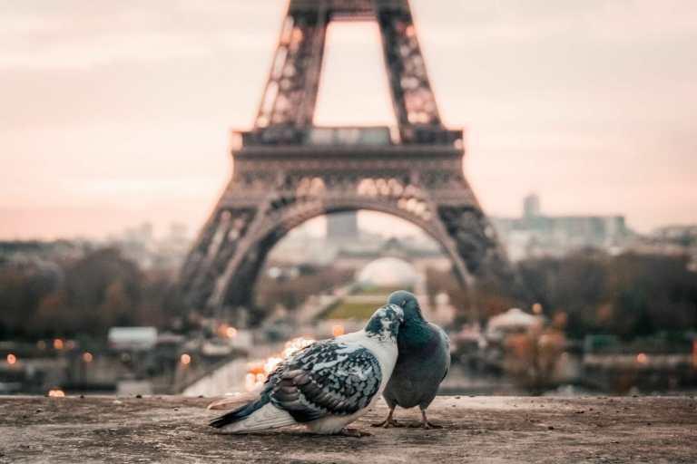 dove alloggiare a parigi
