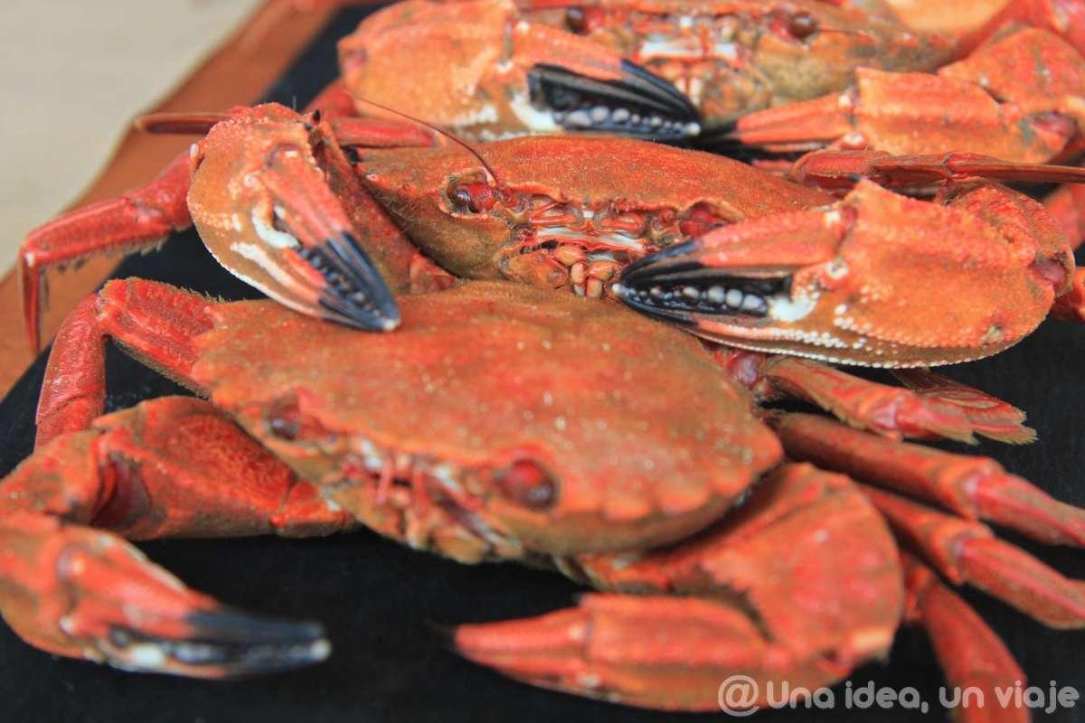 donde-comer-costa-da-morte-galicia-recomendaciones-unaideaunviaje-12