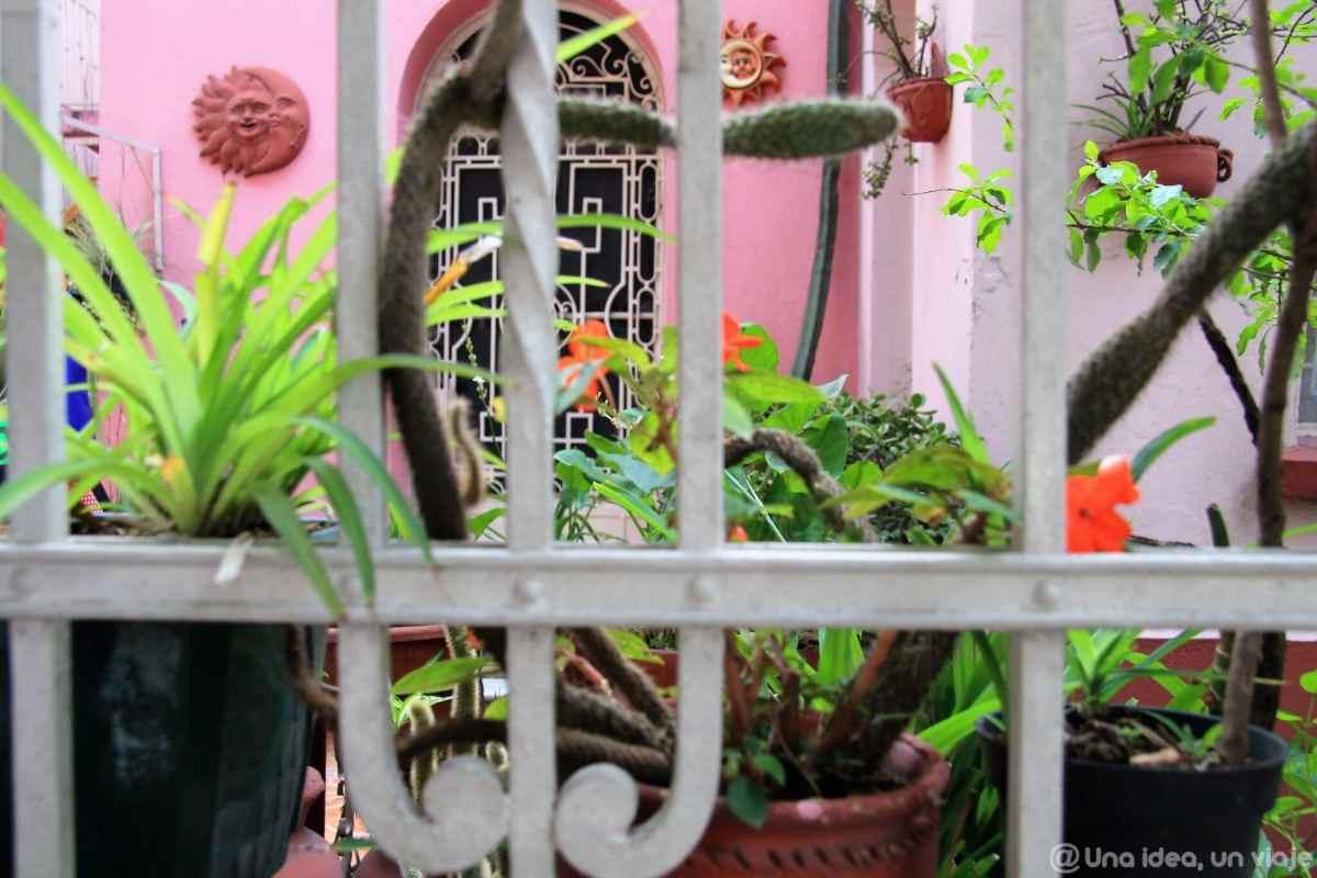 ciudad-mexico-imprescindible-visitas-colonia-roma-condesa-unaideaunviaje-07