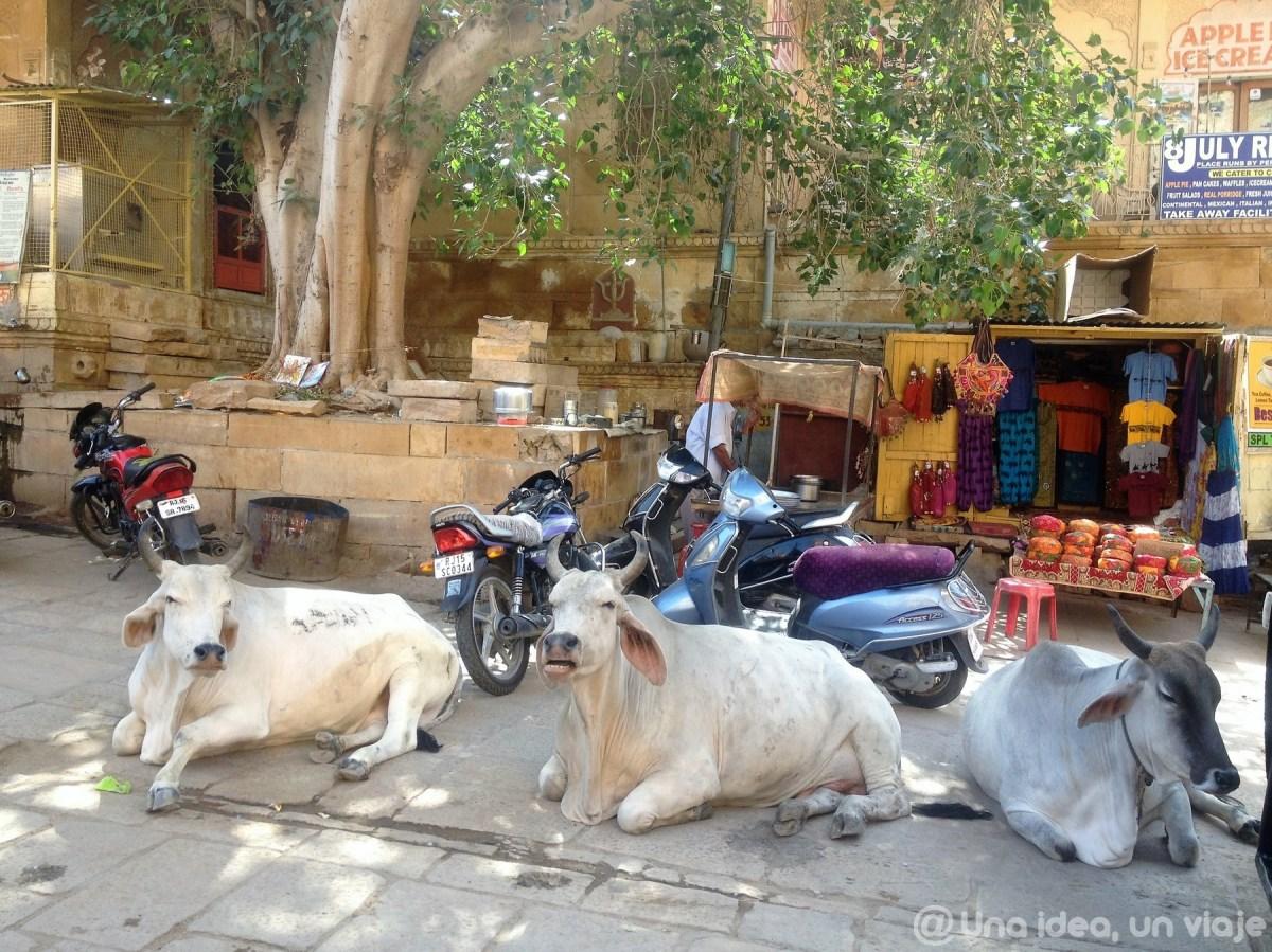 15-dias-viaje-rajastan-que-ver-jaisalmer-unaideaunviaje-08