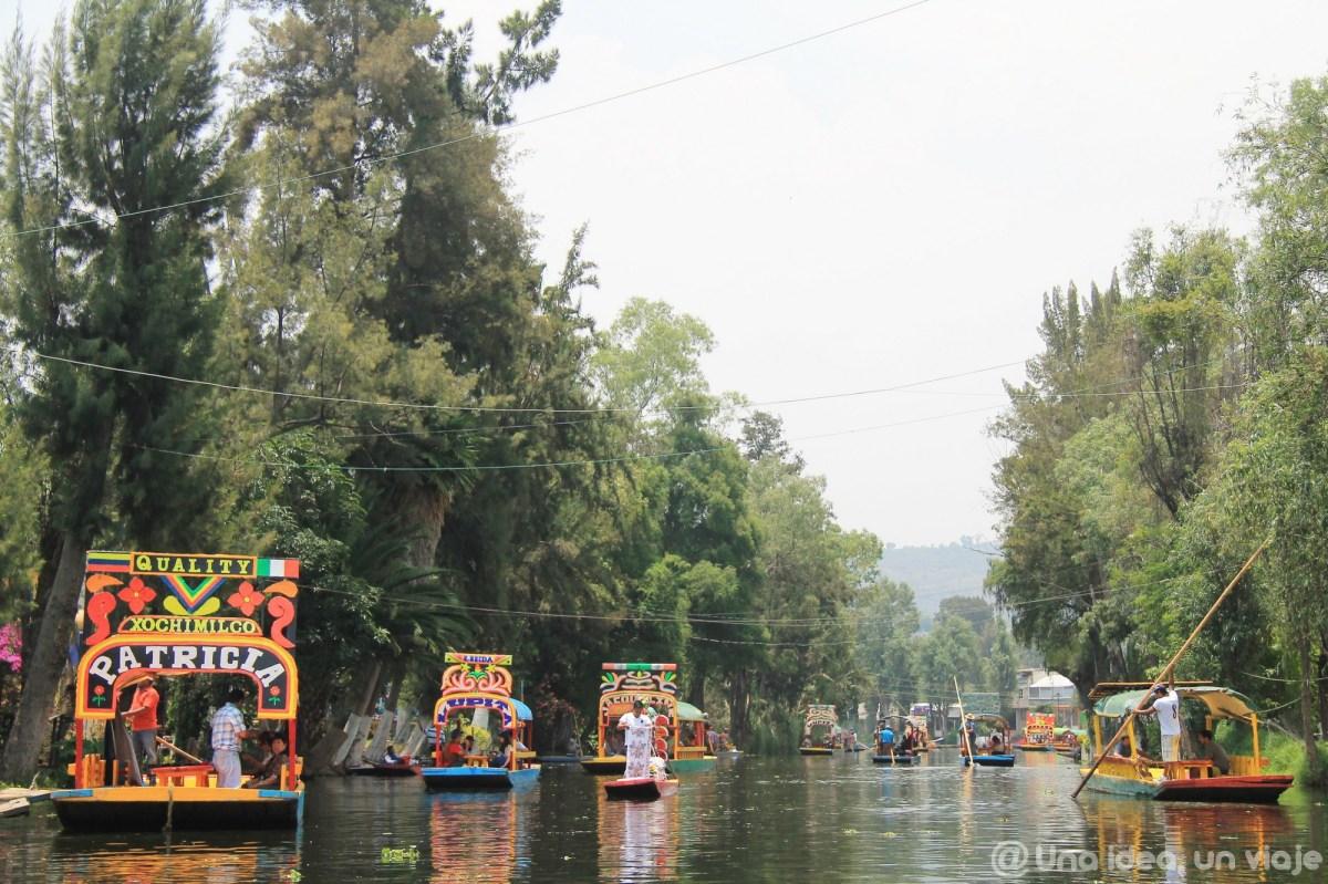 ciudad-mexico-imprescindible-visitar-xochilmico-coyoacan-unaideaunviaje-12
