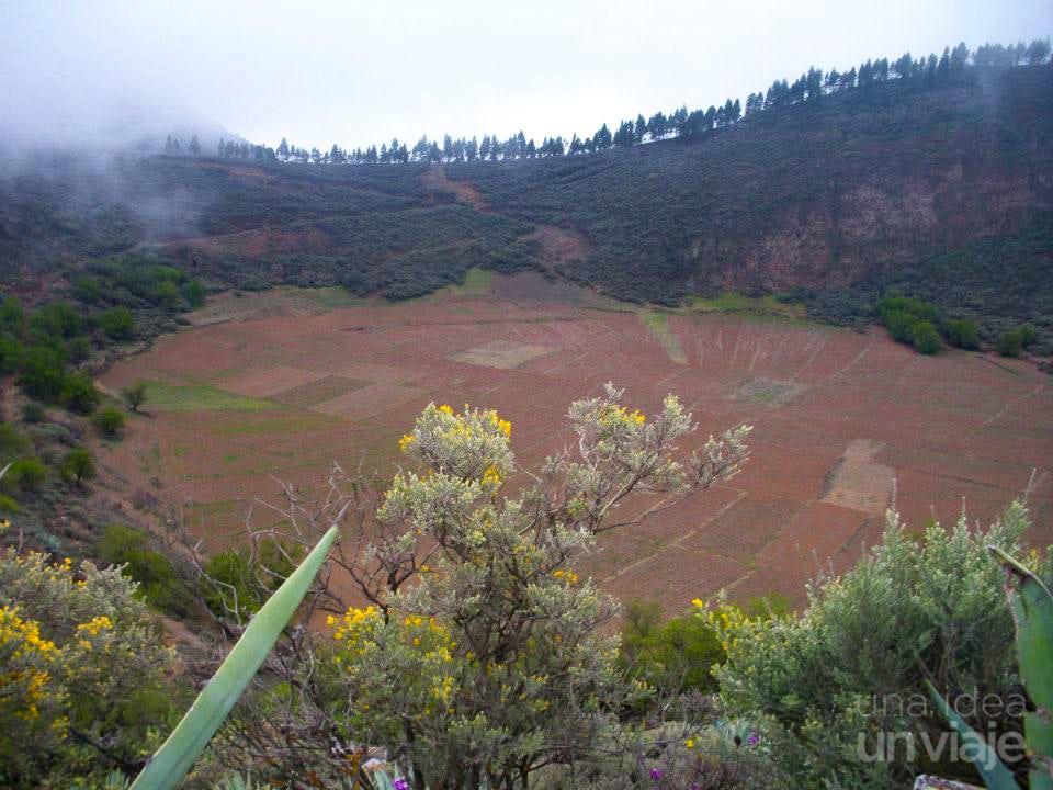 Caldera de los Marteles, Gran Canaria