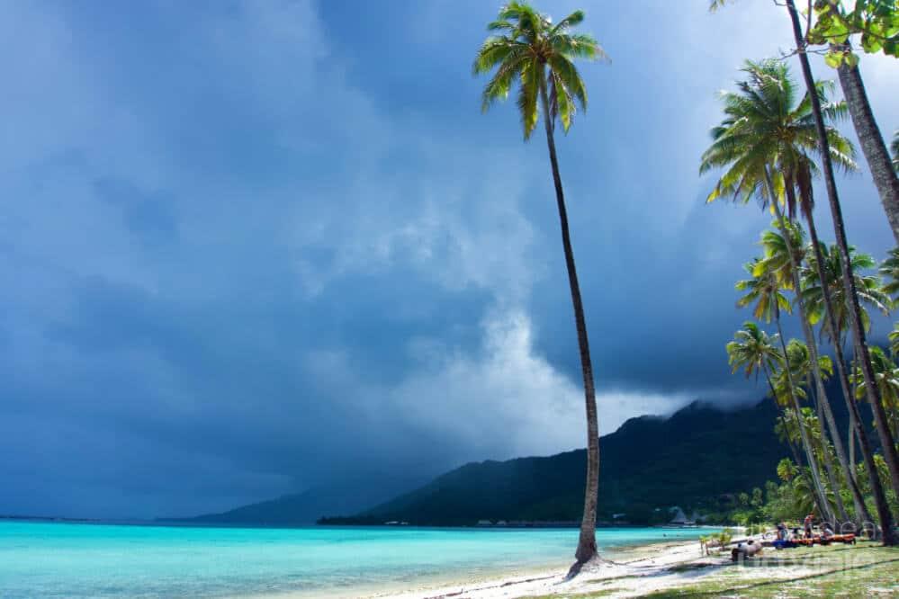 Qué hacer en Moorea Polinesia Francesa