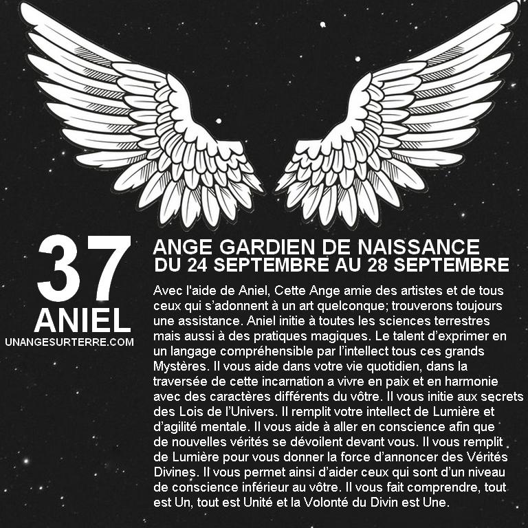 37 - ANIEL.jpg