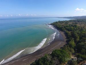 Pavones Beach from Drone